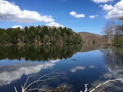 Berkshires Waterfront Lakehouse Sanctuary, Vacation Home Rental In Lanesboro, MA