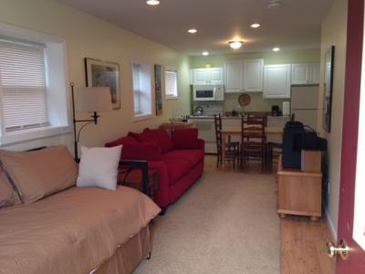 Modern 1 BR Apartment - 6 Miles To Dreams Park - Sleeps 3 - Cooperstown, NY - Central New York Vacat