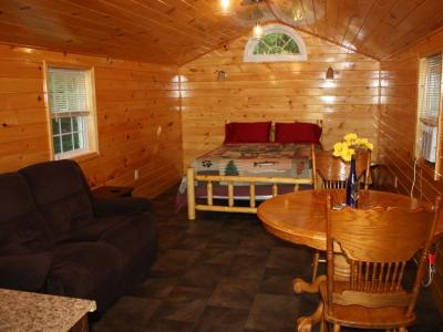 Vacation Rental Cabin, Keuka Lake Outlet-Trail, Wine Trail. Brand New in 2016 - Penn Yan, NY - Finge